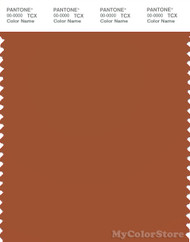 PANTONE SMART 18-1246X Color Swatch Card, Umber