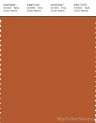 PANTONE SMART 18-1248X Color Swatch Card, Rust