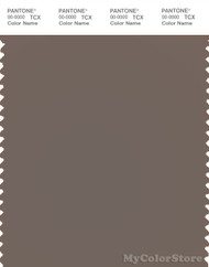 PANTONE SMART 18-1304X Color Swatch Card, Falcon