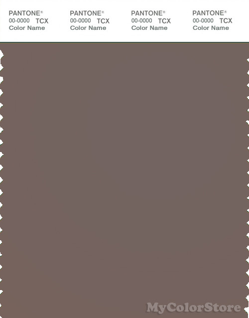 PANTONE SMART 18-1306X Color Swatch Card, Iron