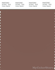 PANTONE SMART 18-1326X Color Swatch Card, Nutmeg