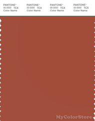 PANTONE SMART 18-1350X Color Swatch Card, Burnt Brick