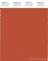PANTONE SMART 18-1354X Color Swatch Card, Burnt Ochre