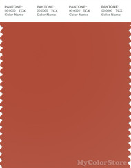 PANTONE SMART 18-1355X Color Swatch Card, Rooibos Tea