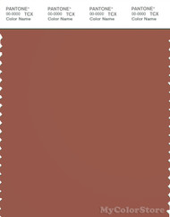 PANTONE SMART 18-1433X Color Swatch Card, Chutney