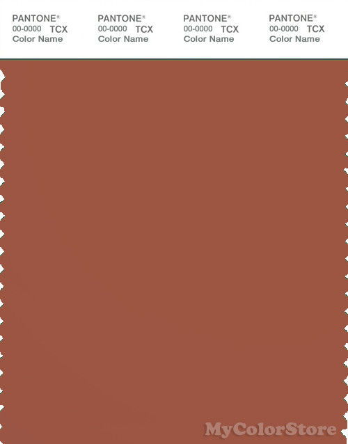 PANTONE SMART 18-1441X Color Swatch Card, Baked Clay