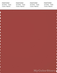 PANTONE SMART 18-1444X Color Swatch Card, Tandori Spice