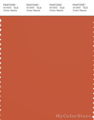 PANTONE SMART 18-1447X Color Swatch Card, Orange Rust