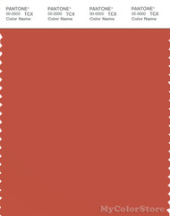 PANTONE SMART 18-1448X Color Swatch Card, Chili