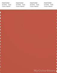 PANTONE SMART 18-1450X Color Swatch Card, Mecca Orange