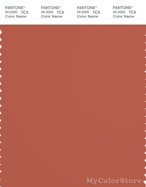 PANTONE SMART 18-1535X Color Swatch Card, Ginger Spice