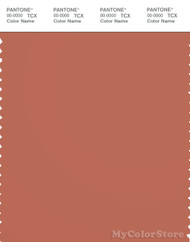 PANTONE SMART 18-1537X Color Swatch Card, Copper Coin