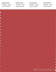 PANTONE SMART 18-1648X Color Swatch Card, Baked Apple