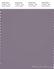 PANTONE SMART 18-3710X Color Swatch Card, Grey Ridge