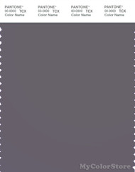 PANTONE SMART 18-3905X Color Swatch Card, Excalibur