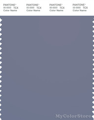 PANTONE SMART 18-3933X Color Swatch Card, Blue Granite