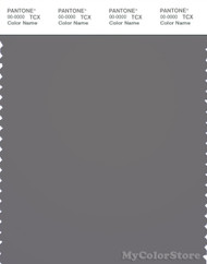 PANTONE SMART 18-4005X Color Swatch Card, Steel Gray