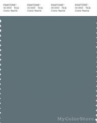 PANTONE SMART 18-4011X Color Swatch Card, Goblin Blue