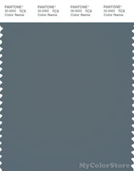 PANTONE SMART 18-4214X Color Swatch Card, Stormy Weather