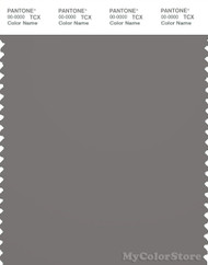 PANTONE SMART 18-5102X Color Swatch Card, Brushed Nickel