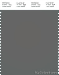 PANTONE SMART 18-5203X Color Swatch Card, Pewter