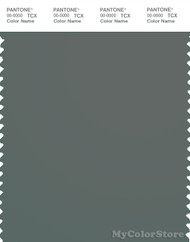 PANTONE SMART 18-5410X Color Swatch Card, Silver Pine