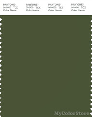 PANTONE SMART 19-0323X Color Swatch Card, Chive