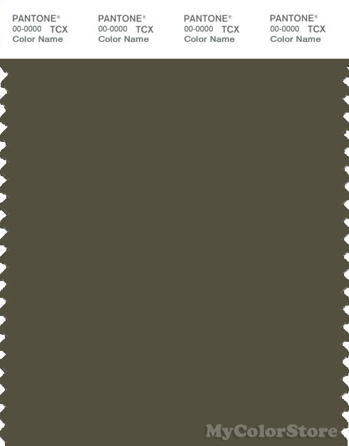 PANTONE SMART 19-0515X Color Swatch Card, Olive Night