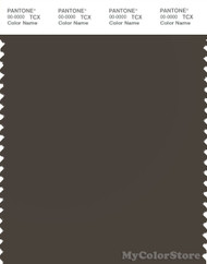 PANTONE SMART 19-0608X Color Swatch Card, Black Olive
