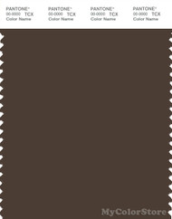 PANTONE SMART 19-0814X Color Swatch Card, Slate Black