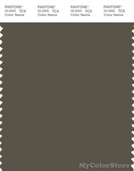 PANTONE SMART 19-0822X Color Swatch Card, Tarmac