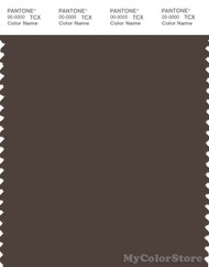 PANTONE SMART 19-0912X Color Swatch Card, Chocolate Brown