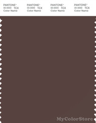 PANTONE SMART 19-1012X Color Swatch Card, Dark Brown