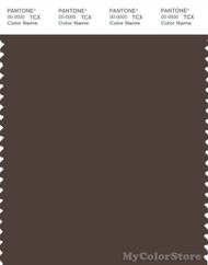 PANTONE SMART 19-1015X Color Swatch Card, Bracken