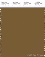 PANTONE SMART 19-1034X Color Swatch Card, Breen