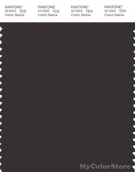 PANTONE SMART 19-1103X Color Swatch Card, Espresso