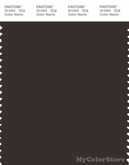 PANTONE SMART 19-1109X Color Swatch Card, Chocolate Torte