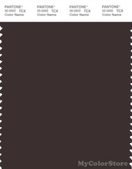 PANTONE SMART 19-1111X Color Swatch Card, Black Coffee