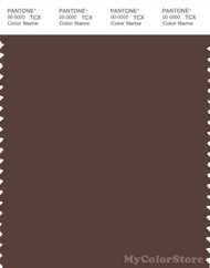 PANTONE SMART 19-1118X Color Swatch Card, Chestnut