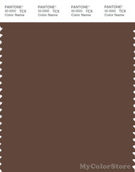 PANTONE SMART 19-1121X Color Swatch Card, Pinecone