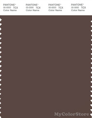 PANTONE SMART 19-1213X Color Swatch Card, Shopping Bag