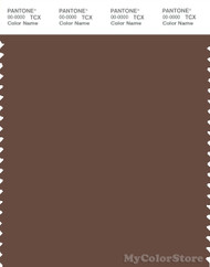 PANTONE SMART 19-1217X Color Swatch Card, Mustang