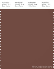 PANTONE SMART 19-1228X Color Swatch Card, Root Beer