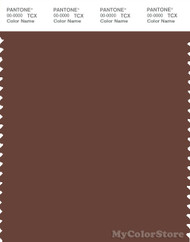 PANTONE SMART 19-1235X Color Swatch Card, Brunette