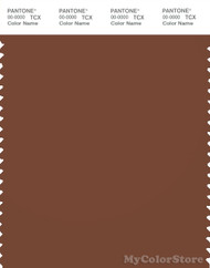 PANTONE SMART 19-1241X Color Swatch Card, Tortoise Shell