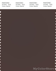 PANTONE SMART 19-1314X Color Swatch Card, Seal Brown