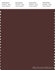 PANTONE SMART 19-1317X Color Swatch Card, Bitter Chocolate