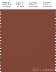 PANTONE SMART 19-1333X Color Swatch Card, Sequoia