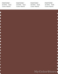 PANTONE SMART 19-1436X Color Swatch Card, Cinnamon