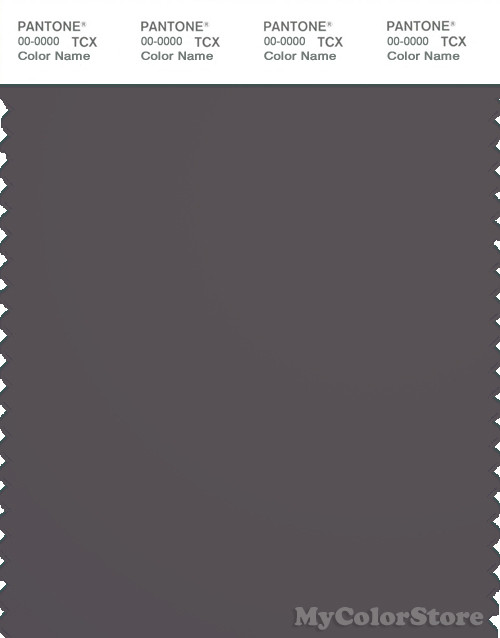 PANTONE SMART 19-3900X Color Swatch Card, Pavement